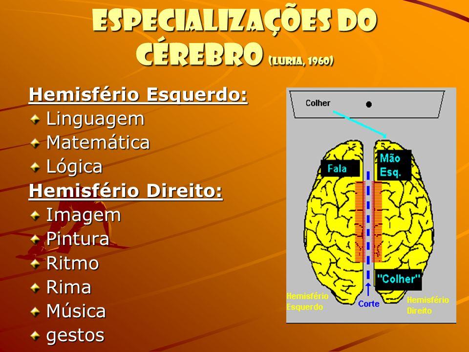 Especializações do cérebro (Luria, 1960) Hemisfério Esquerdo: LinguagemMatemáticaLógica Hemisfério Direito: ImagemPinturaRitmoRimaMúsicagestos
