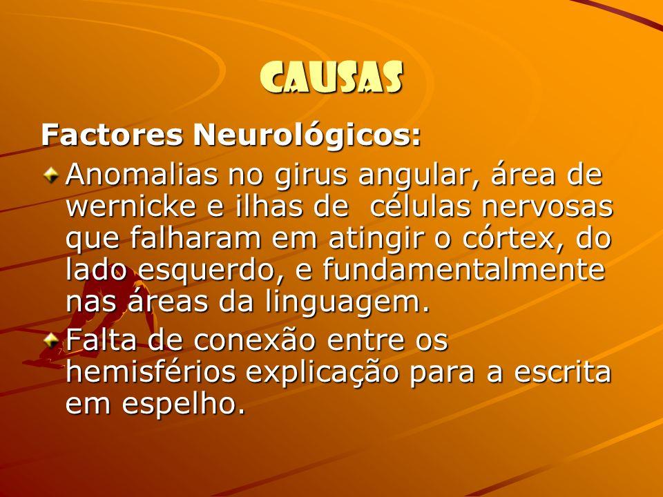 Causas Factores Neurológicos: Anomalias no girus angular, área de wernicke e ilhas de células nervosas que falharam em atingir o córtex, do lado esque