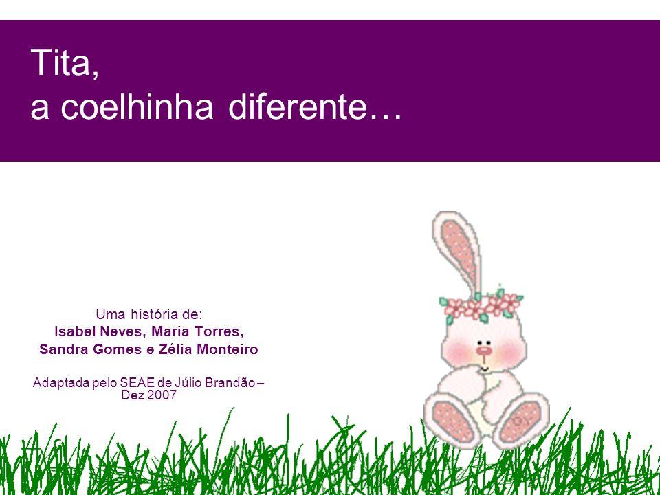 Tita, a coelhinha diferente… Uma história de: Isabel Neves, Maria Torres, Sandra Gomes e Zélia Monteiro Adaptada pelo SEAE de Júlio Brandão – Dez 2007