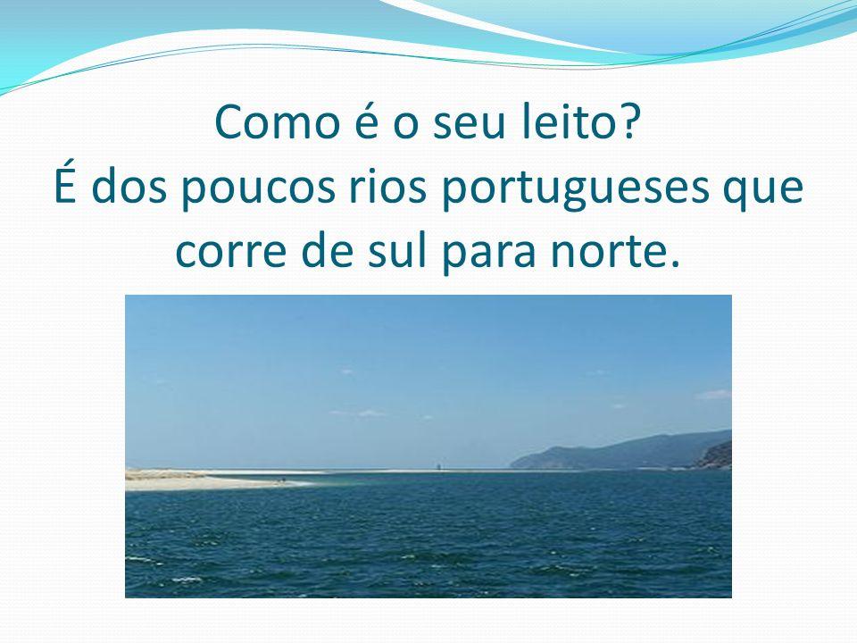 Onde nasce, por onde passa, onde desagua? O Rio Sado nasce perto de Ourique, desagua no Oceano Atlântico perto de Setúbal e no seu percurso passa por