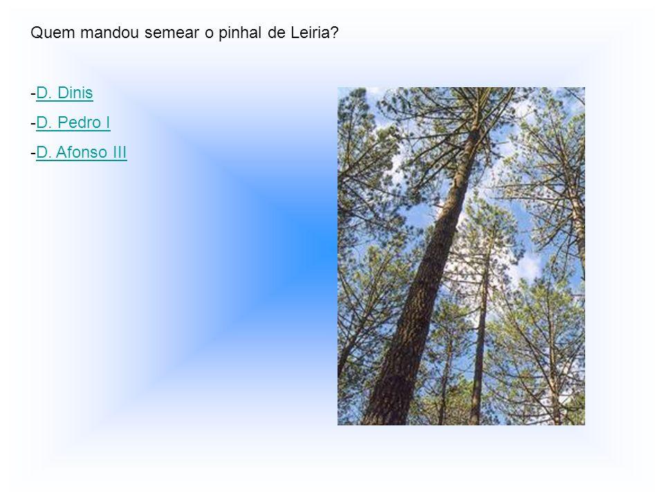 Quem mandou semear o pinhal de Leiria? -D-D. Dinis -D-D. Pedro I -D-D. Afonso III