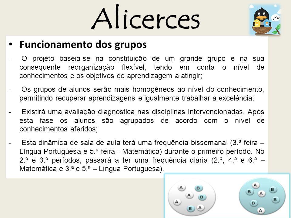 Alicerces Funcionamento dos grupos - O projeto baseia-se na constituição de um grande grupo e na sua consequente reorganização flexível, tendo em cont