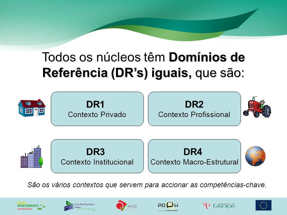 Domínios de Referência (DRs) iguais, que são: Todos os núcleos têm Domínios de Referência (DRs) iguais, que são: DR1 Contexto Privado DR2 Contexto Pro