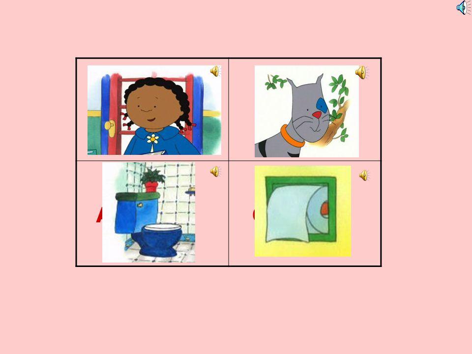O papel higiénico A sanita As toalhaso armário