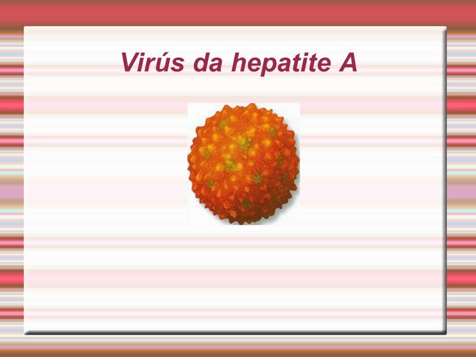 O que é a Hepatite A ? Hepatite A é uma doença do fígado altamente contagiosa e algumas vezes fatal. É causada por um vírus, o HAV. Geralmente esta do
