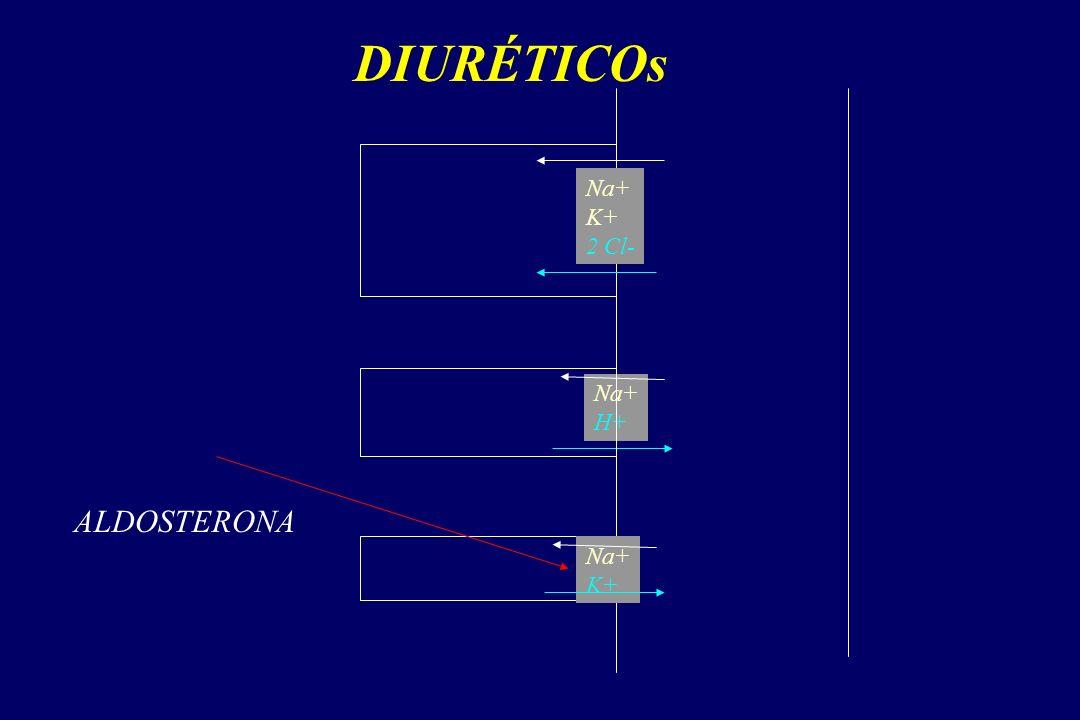 DIURÉTICOs Na+ K+ 2 Cl- Na+ H+ Na+ K+ ALDOSTERONA