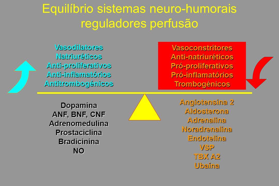 VasodilatoresNatriuréticosAnti-proliferativosAnti-inflamatóriosAntitrombogénicos Equilíbrio sistemas neuro-humorais reguladores perfusãoVasoconstritoresAnti-natriuréticosPró-proliferativosPró-inflamatóriosTrombogénicos Dopamina ANF, BNF, CNF AdrenomedulinaProstaciclinaBradicininaNO Angiotensina 2 AldosteronaAdrenalinaNoradrenalinaEndotelinaVSP TBX A2 Ubaína