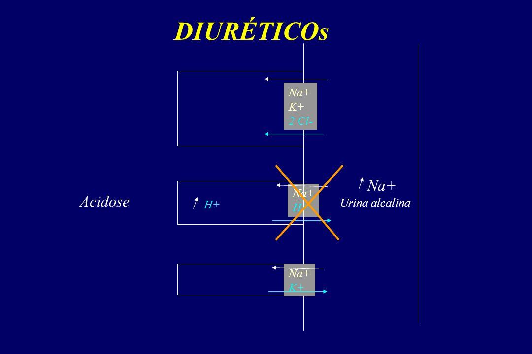 DIURÉTICOs Na+ K+ 2 Cl- Na+ H+ Na+ K+ Acidose H+ Urina alcalina Na+