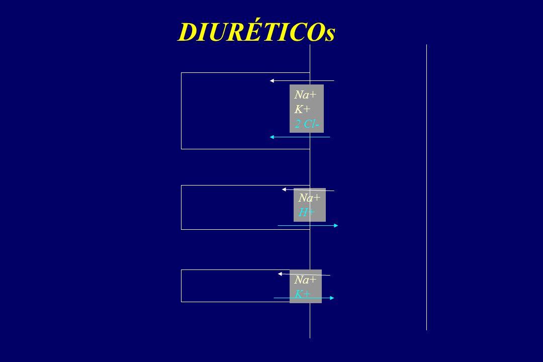 DIURÉTICOs Na+ K+ 2 Cl- Na+ H+ Na+ K+