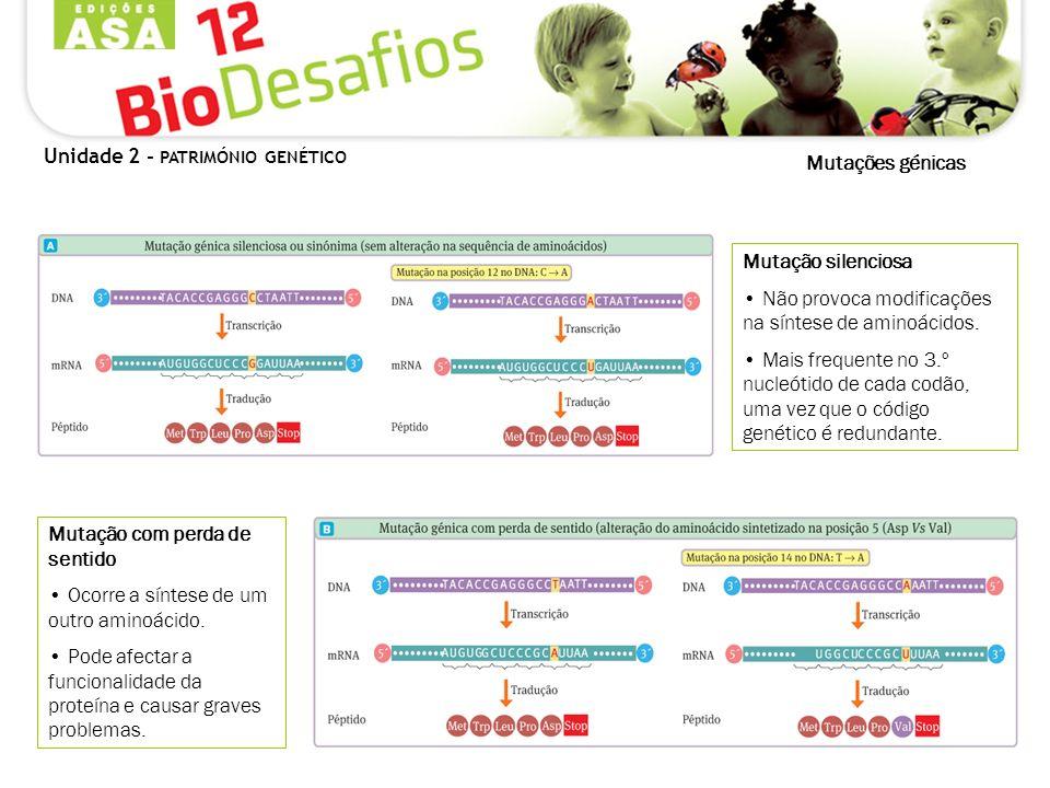 Mutações génicas Mutação com perda de sentido Ocorre a síntese de um outro aminoácido. Pode afectar a funcionalidade da proteína e causar graves probl