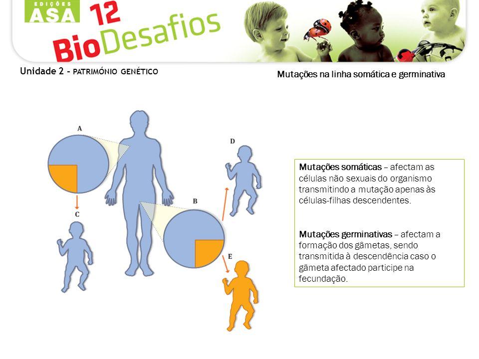 Mutações na linha somática e germinativa Mutações somáticas – afectam as células não sexuais do organismo transmitindo a mutação apenas às células-fil