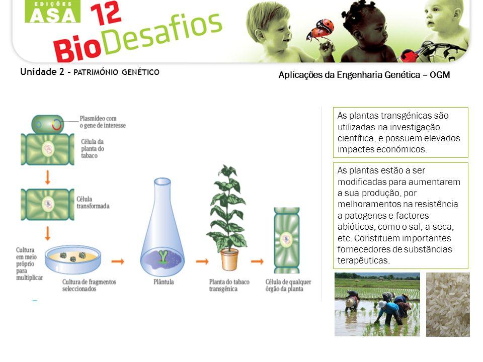 As plantas transgénicas são utilizadas na investigação científica, e possuem elevados impactes económicos. As plantas estão a ser modificadas para aum