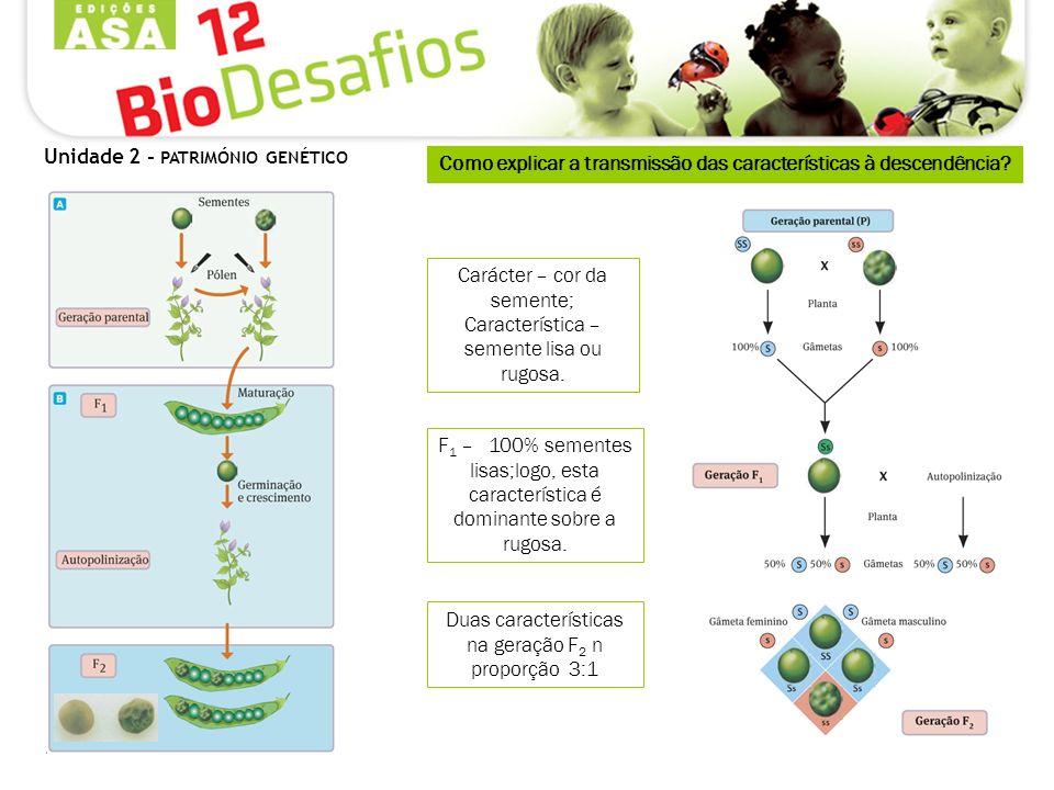 Como explicar a transmissão das características à descendência? Duas características na geração F 2 n proporção 3:1 F 1 – 100% sementes lisas;logo, es