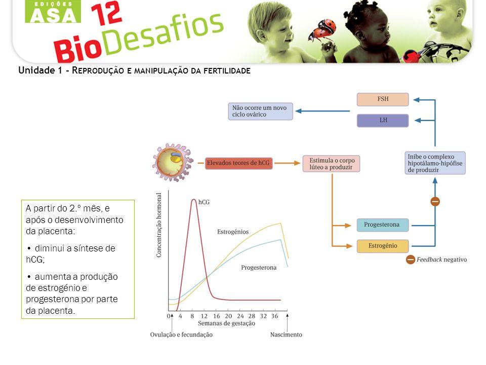 Unidade 1 - R EPRODUÇÃO E MANIPULAÇÃO DA FERTILIDADE A partir do 2.º mês, e após o desenvolvimento da placenta: diminui a síntese de hCG; aumenta a produção de estrogénio e progesterona por parte da placenta.
