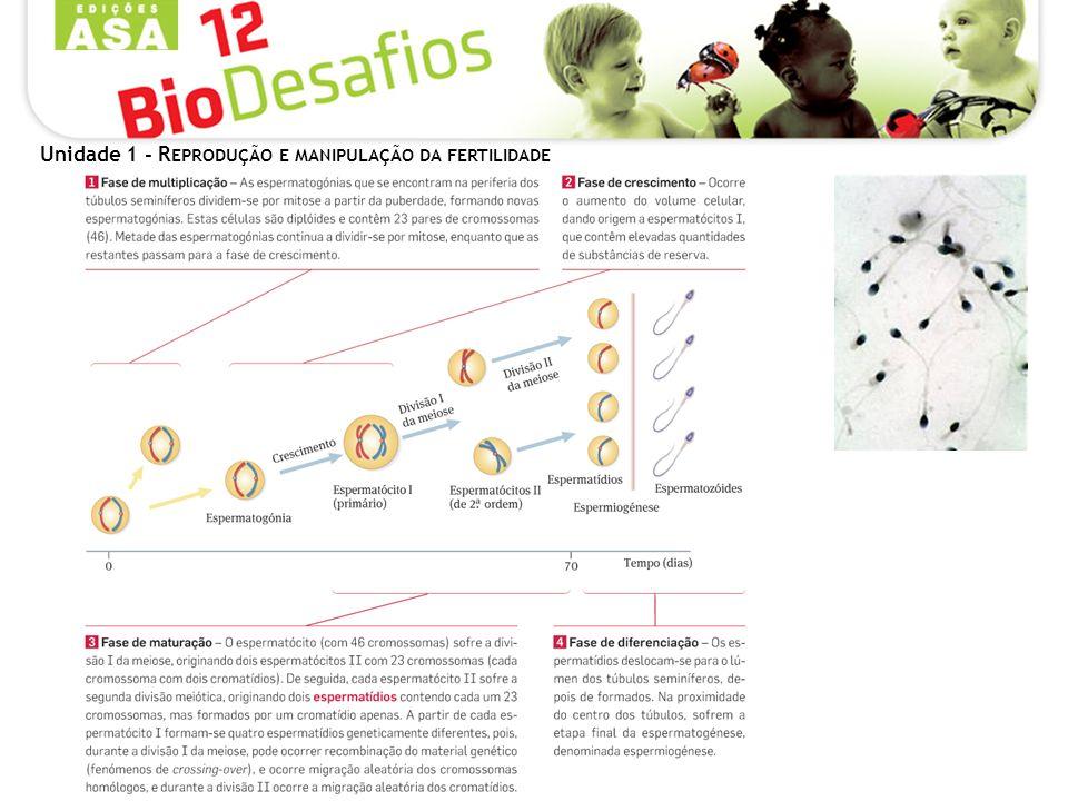 Unidade 1 - R EPRODUÇÃO E MANIPULAÇÃO DA FERTILIDADE Métodos contraceptivos tecnológicos – métodos de barreira Todos estes métodos visam impedir o encontro dos gâmetas, e designam-se por métodos de barreira.