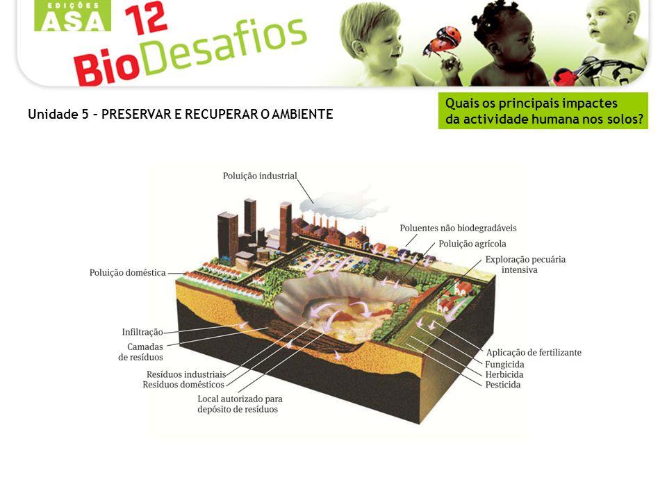 Tratamento preliminar Visa eliminar os resíduos sólidos de grandes dimensões, quando estes passam por tapetes e crivos.
