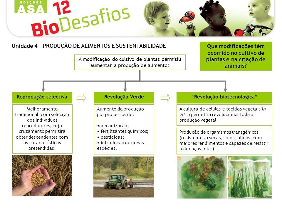 Que modificações têm ocorrido no cultivo de plantas e na criação de animais? A modificação do cultivo de plantas permitiu aumentar a produção de alime