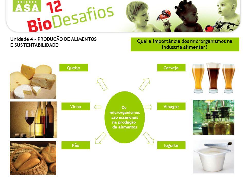 Qual a importância dos microrganismos na indústria alimentar? Os microrganismos são essenciais na produção de alimentos Pão Vinho QueijoCerveja Vinagr