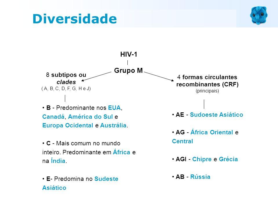 HIV-1 Grupo M 8 subtipos ou clades ( A, B, C, D, F, G, H e J) 4 formas circulantes recombinantes (CRF) (principais) AE - Sudoeste Asiático AG - África