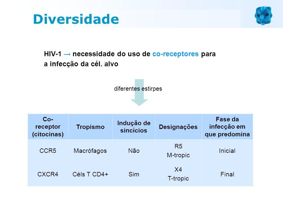 HIV-1 necessidade do uso de co-receptores para a infecção da cél. alvo Diversidade Co- receptor (citocinas) Tropismo Indução de sincícios Designações