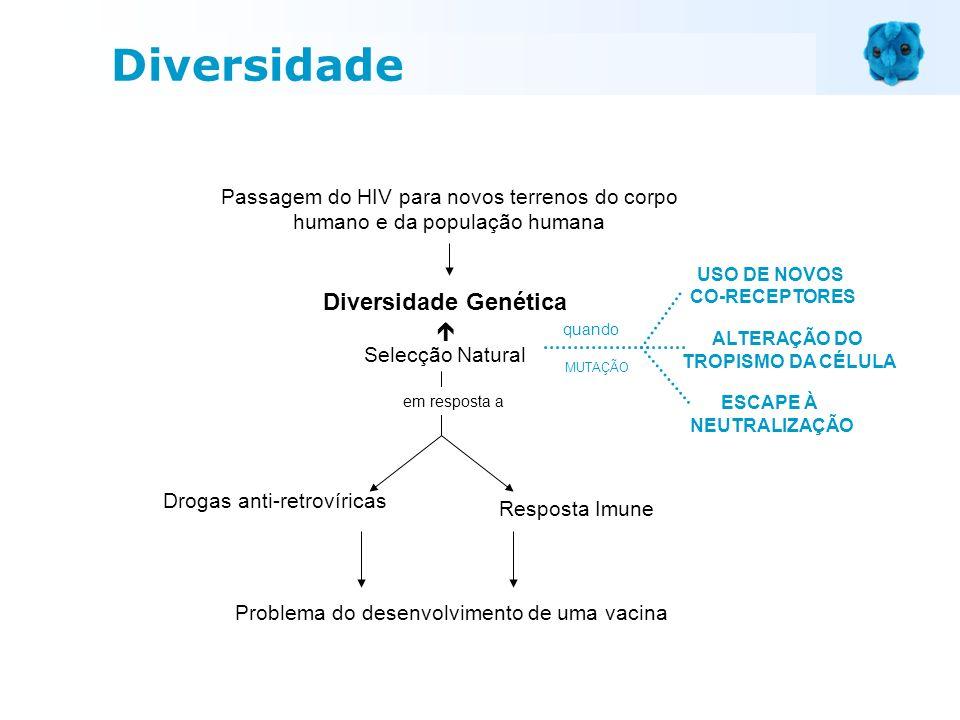 Diversidade Genética Selecção Natural Drogas anti-retrovíricas em resposta a Resposta Imune Problema do desenvolvimento de uma vacina Passagem do HIV