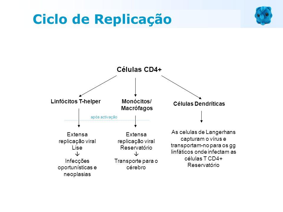 Células CD4+ Linfócitos T-helperMonócitos/ Macrófagos Células Dendríticas Extensa replicação viral Reservatório Transporte para o cérebro Extensa repl