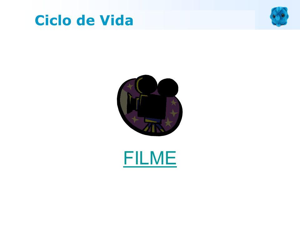 FILME Ciclo de Vida