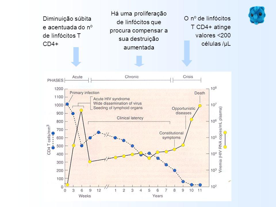 Diminuição súbita e acentuada do nº de linfócitos T CD4+ Há uma proliferação de linfócitos que procura compensar a sua destruição aumentada O nº de li