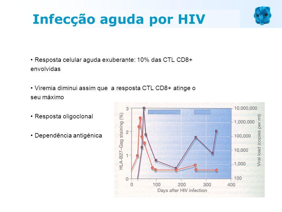 Resposta celular aguda exuberante: 10% das CTL CD8+ envolvidas Viremia diminui assim que a resposta CTL CD8+ atinge o seu máximo Resposta oligoclonal