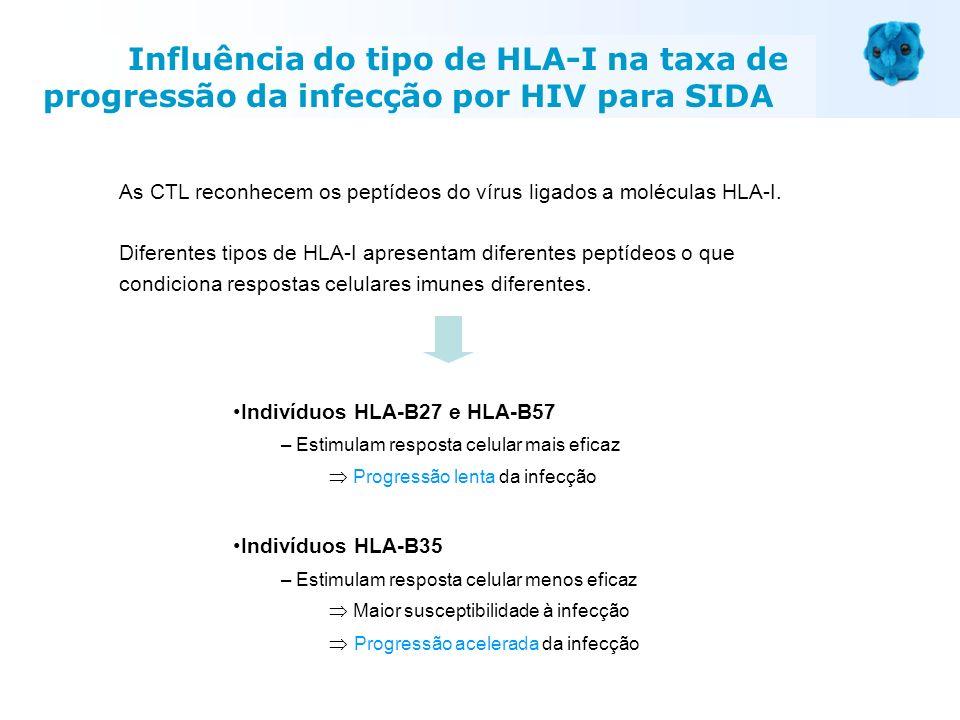 Indivíduos HLA-B27 e HLA-B57 – Estimulam resposta celular mais eficaz Progressão lenta da infecção Indivíduos HLA-B35 – Estimulam resposta celular men