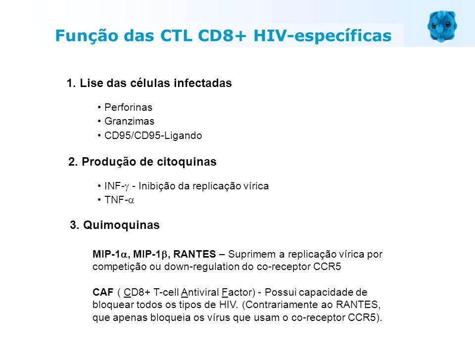 1. Lise das células infectadas Perforinas Granzimas CD95/CD95-Ligando 2. Produção de citoquinas INF- - Inibição da replicação vírica TNF- 3. Quimoquin
