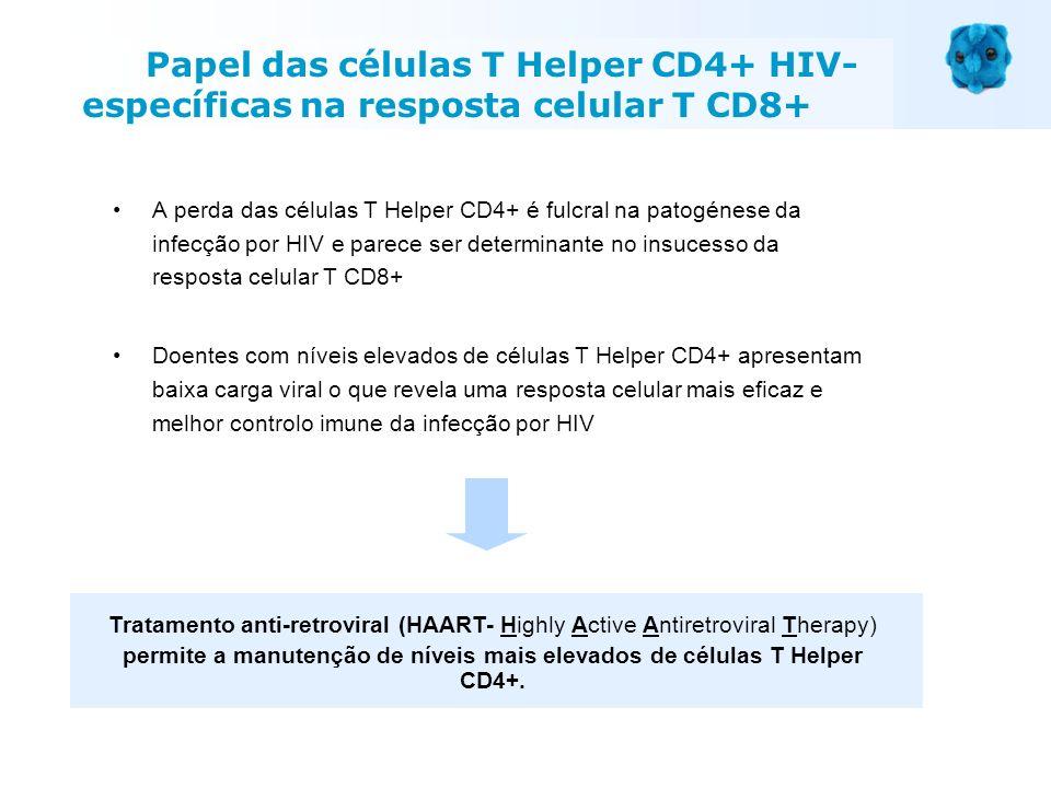 A perda das células T Helper CD4+ é fulcral na patogénese da infecção por HIV e parece ser determinante no insucesso da resposta celular T CD8+ Doente