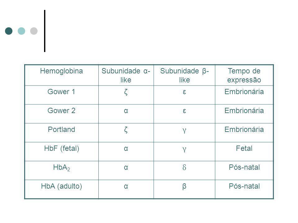 HemoglobinaSubunidade α- like Subunidade β- like Tempo de expressão Gower 1ζεEmbrionária Gower 2αεEmbrionária Portlandζ γ Embrionária HbF (fetal)α γ F