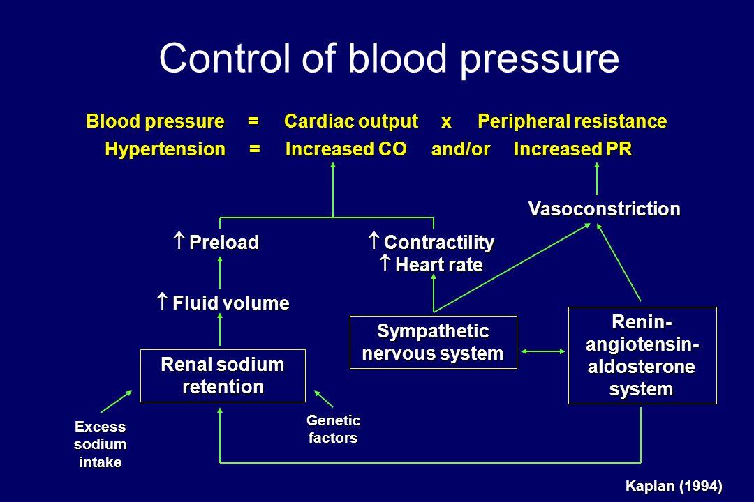 Hipertensão. JORGE POLÓNIA do Hospital Pedro Hispano Unidade de Hipertensão Arterial e Risco Cardiovascular &