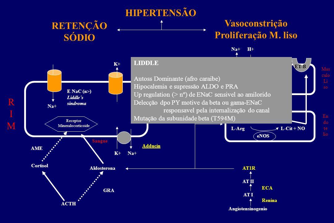 Relação TA e ingestão-excreção renal de sódio em NT e HT sensíveis (SS) e resistentes (SR) ao sal 0 1 2 3 4 5 Ingestão e excreção de Sódio (x normal)