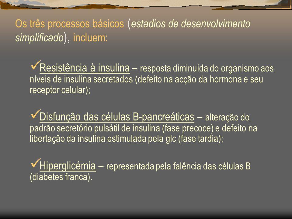 Sindrome Metabólico Insulino resistência Hiperinsulinémia Dislipidémia Alteração da fibrinólise Microalbuminúria Disfunção Vascular endotelial Inflamação sistémica Hipertensão Fígado Gordo Hipertrofia Benigna da Próstata