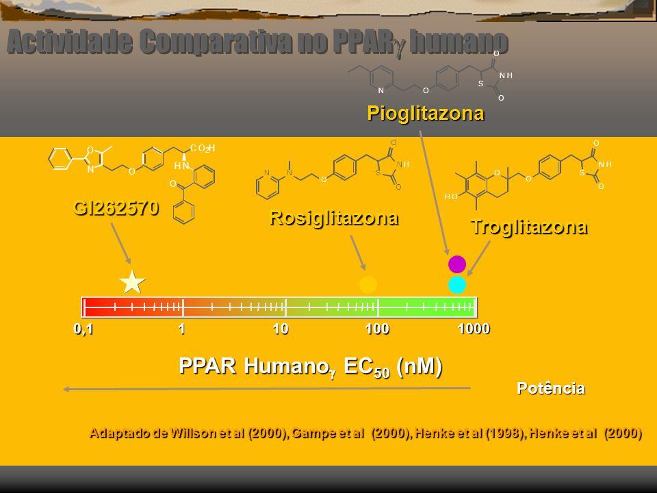 Padrões de Expressão dos receptores PPAR PPAR PPAR FígadoRimCoração Músculo PPAR PPAR Tecido adiposo Intestino grosso Células monocitárias PPAR PPAR Quase todos os tecidos Kliewer (1999)