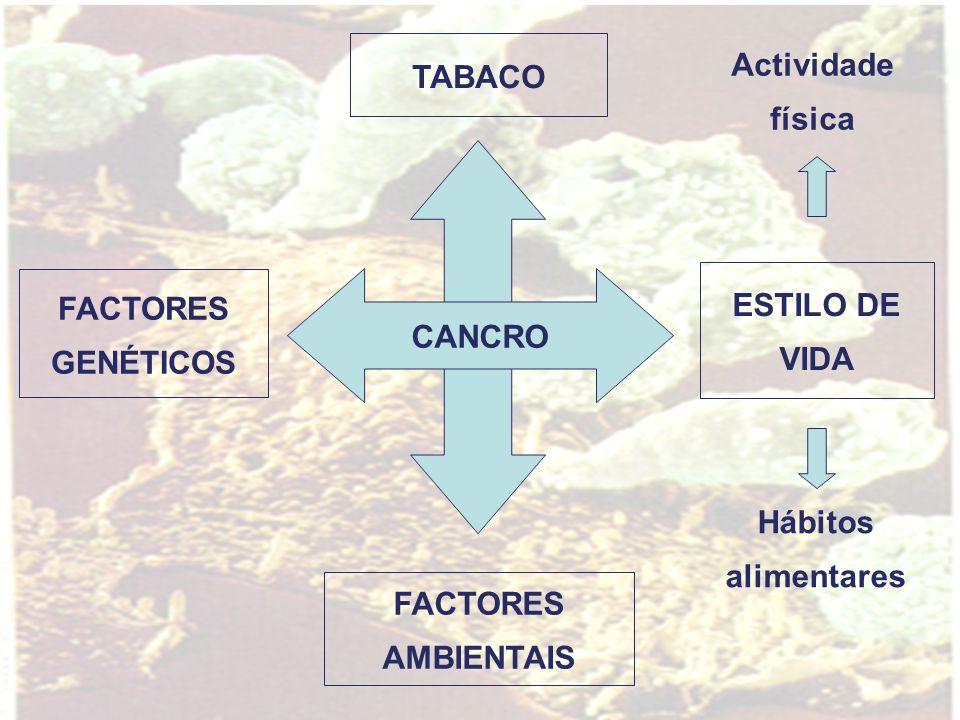 CANCRO ESTILO DE VIDA FACTORES GENÉTICOS Hábitos alimentares Actividade física FACTORES AMBIENTAIS TABACO