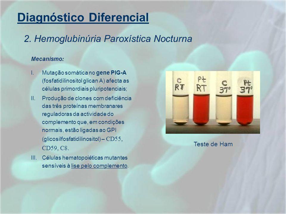 Diagnóstico Diferencial Mecanismo: I.Mutação somática no gene PIG-A (fosfatidilinositol glican A) afecta as células primordiais pluripotenciais; II.Pr