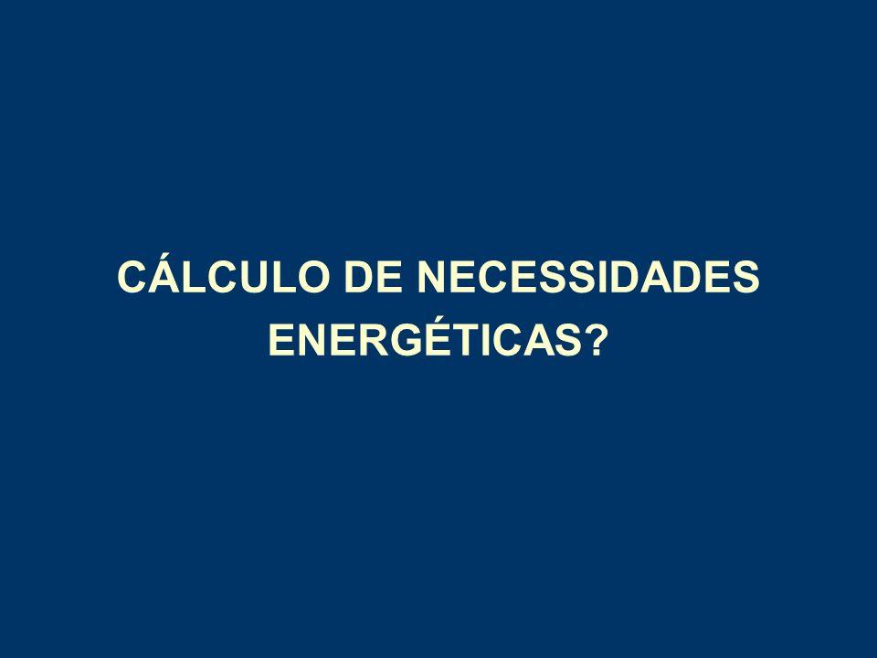 CÁLCULO DE NECESSIDADES ENERGÉTICAS?