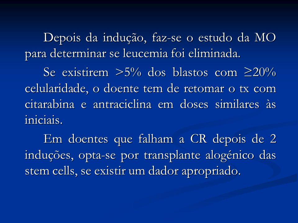 Depois da indução, faz-se o estudo da MO para determinar se leucemia foi eliminada. Se existirem >5% dos blastos com 20% celularidade, o doente tem de