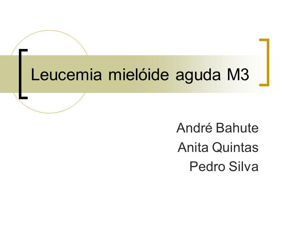 Leucemia mielóide aguda M3 André Bahute Anita Quintas Pedro Silva