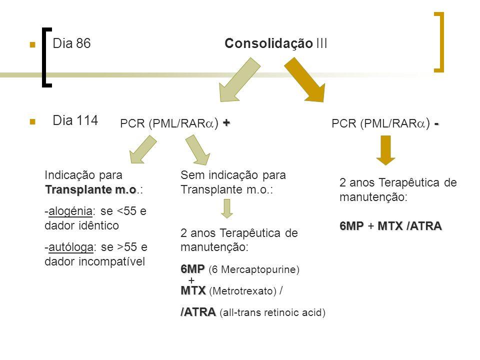 Dia 86 Consolidação III Dia 114 + PCR (PML/RAR ) + - PCR (PML/RAR ) - Transplante m.o Indicação para Transplante m.o.: -alogénia: se <55 e dador idênt