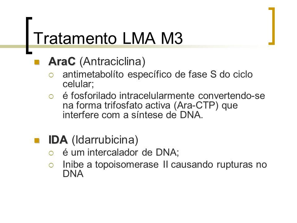 Tratamento LMA M3 AraC AraC (Antraciclina) antimetabolíto específico de fase S do ciclo celular; é fosforilado intracelularmente convertendo-se na for
