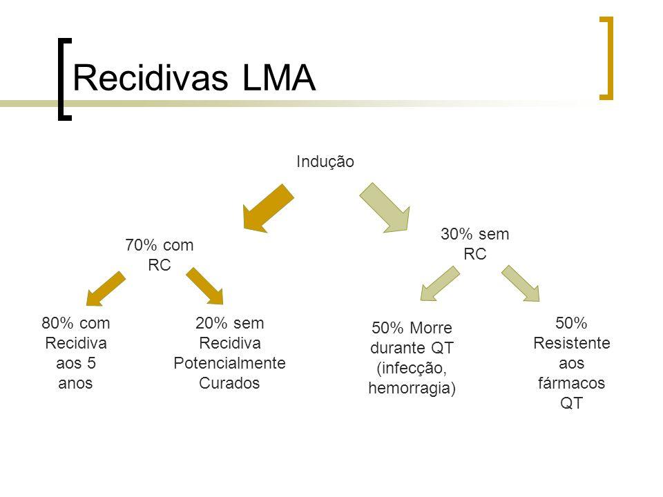 Recidivas LMA Indução 70% com RC 30% sem RC 80% com Recidiva aos 5 anos 50% Resistente aos fármacos QT 20% sem Recidiva Potencialmente Curados 50% Mor