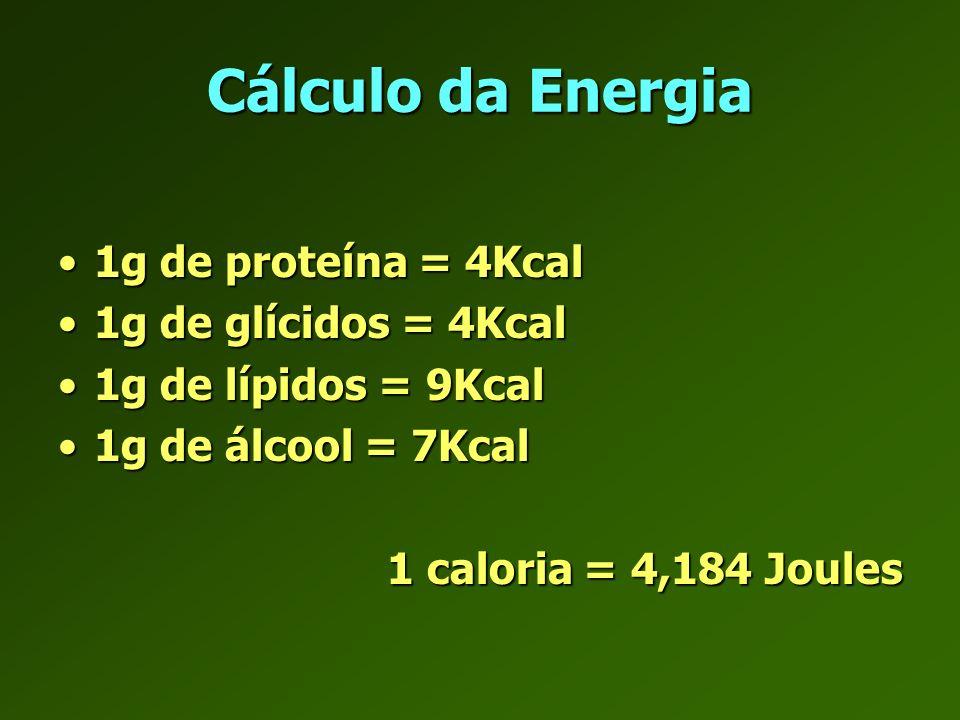 Balanço energético E in – E out = E stored E in – E out = E stored E out = RMR + EE act + TEF E out = RMR + EE act + TEF Hill JO, Drougas H, Peters JC, Ann Intern Med 1993.