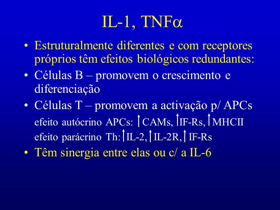 IL-1, TNF Estruturalmente diferentes e com receptores próprios têm efeitos biológicos redundantes: Células B – promovem o crescimento e diferenciação