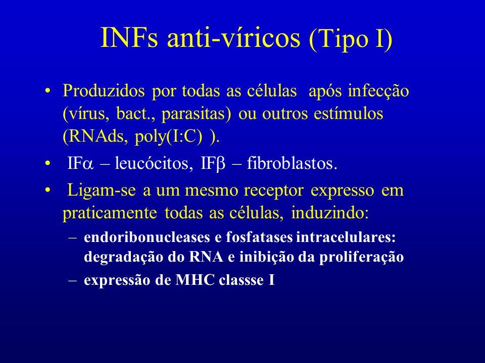 INFs anti-víricos (Tipo I) Produzidos por todas as células após infecção (vírus, bact., parasitas) ou outros estímulos (RNAds, poly(I:C) ). IF – leucó