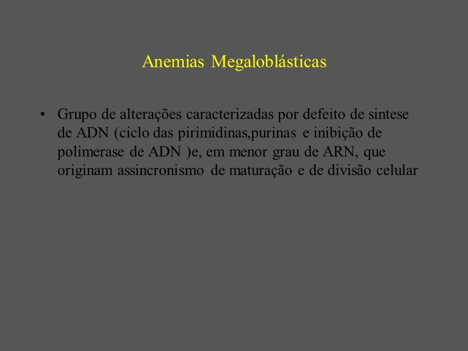 Anemias Megaloblásticas Grupo de alterações caracterizadas por defeito de sintese de ADN (ciclo das pirimidinas,purinas e inibição de polimerase de ADN )e, em menor grau de ARN, que originam assincronismo de maturação e de divisão celular