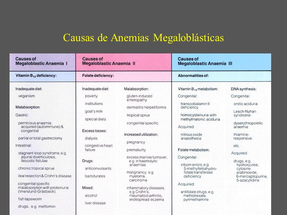 Causas de Anemias Megaloblásticas